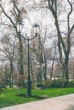 Lampion w parku fotografia stock