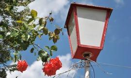 Lampione con le rose fotografia stock