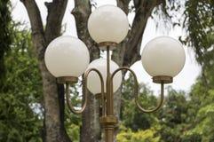 Lampione nel parco Immagini Stock Libere da Diritti