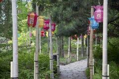 Lampions dans le jardin Image libre de droits
