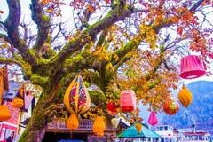 Lampions rojo y anaranjado en el árbol del otoño, Hallstatt, la UNESCO, A imágenes de archivo libres de regalías