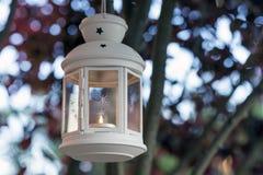 Lampionu ogród Obraz Royalty Free