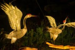 Lampiony przy W połowie jesień festiwalem w Singapur zdjęcie royalty free