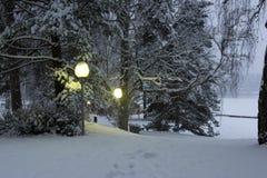 LAMPIONY W zima parku Obrazy Royalty Free