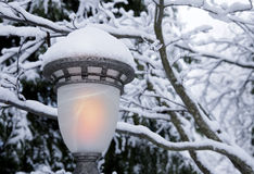 Lamplight im Schnee Stockbilder