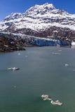 Lamplough glaciär Royaltyfria Foton