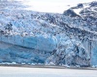 Lamplugh冰川特写镜头  库存照片