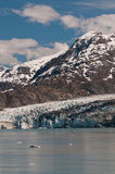 Lamplugh Glacier Stock Photography