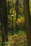 lampmetallgata fotografering för bildbyråer