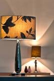 lampnatt Royaltyfria Bilder
