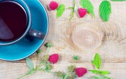 Lampone del tè - primo piano Fotografie Stock