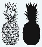 Lampone maturo con l'ananas saporito del leafRipe Immagini Stock Libere da Diritti