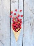 Lamponi freschi maturi in cono gelato su fondo di legno rustico Immagine Stock Libera da Diritti