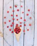 Lamponi freschi maturi in cono gelato su fondo di legno rustico Fotografie Stock
