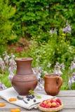 Lamponi nel cestino Piatti dell'argilla Nel giardino Fotografie Stock