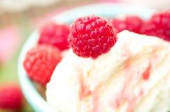 Lamponi organici sul gelato della vaniglia Fotografia Stock Libera da Diritti
