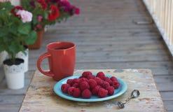 Lamponi su un piatto con una tazza di caffè Fotografia Stock