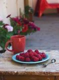 Lamponi su un piatto con una tazza di caffè Immagine Stock