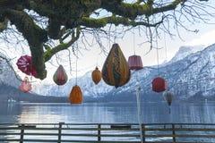 Lampoons op een boom Stock Foto