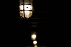 Lampor i mörkerbakgrund Arkivfoto