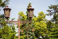 Lampor i parken Royaltyfria Foton