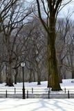Lampost в снеге Стоковое Изображение