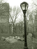 Lampost in central park, nyc Royalty Free Stock Photo