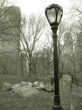 Lampost en Central Park, nyc Foto de archivo libre de regalías