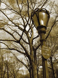 Lampost, sign, trees. In central park nyc royalty free stock image