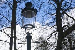 Lampost tradizionale con gli alberi ed il cielo blu Immagine Stock