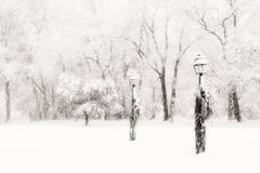 Lamposts in blinding snow storm. Two lamp posts stand steady against a heavy snowstorm Royalty Free Stock Images