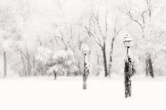 Lamposts in verblindend sneeuwonweer Royalty-vrije Stock Afbeeldingen