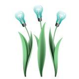 Lampowej żarówki tulipany Obrazy Stock