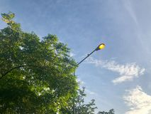 Lamppol i parkera Arkivfoto