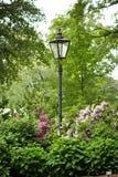lamppost сада зеленый стоковая фотография