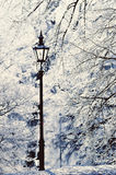Lamppost. In the winter park covered with white snow stock image