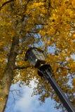 lamppost fotografia stock libera da diritti