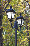 Lamppost on a background of yellow autumn foliage Royalty Free Stock Photo