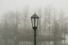 A lamppost behind a blurry forest stock photo