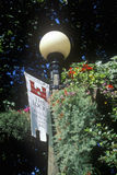 Lamppost at the Chittenden Locks, Seattle, WA Royalty Free Stock Photography