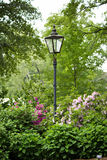 Lamppost en jardín verde Fotografía de archivo