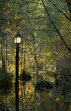 Lamppost In Forest Reflections on Water Autumn Lea Stock Photo