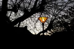Lamppost glowing in the park with winter branches silhouettes. Glowing lamppost in the park with winter branches silhouettes of trees. Electric lamp seen during stock photos