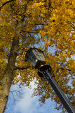 Lamppost Royalty Free Stock Photography