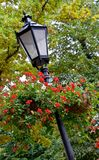 Lamppost with hanging baskets. Of red flowers stock photography