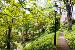 Lamppost on a narrow path in a city park Stock Photography