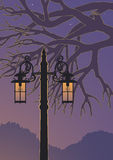 Lamppost at Night Stock Photography