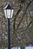A lamppost in the park Stock Image