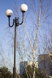 Lamppost. In a Park in spring Royalty Free Stock Image