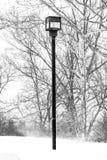 Lamppost pod śniegiem obraz stock